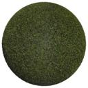 Asset: Grass003