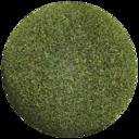 Asset: Grass004