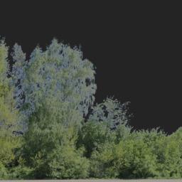 Asset: Backdrop001