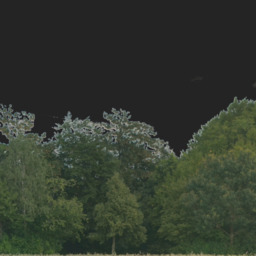 Asset: Backdrop003