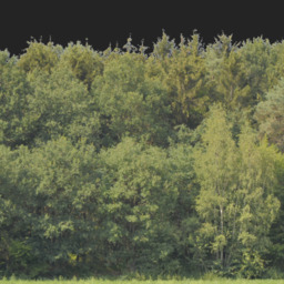 Asset: Backdrop004
