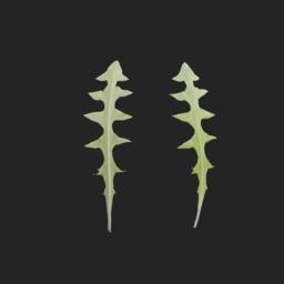 Asset: Leaf002