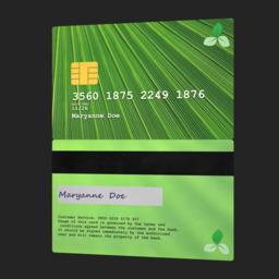 Asset: PaymentCard003
