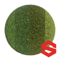 Asset: GrassSubstance001